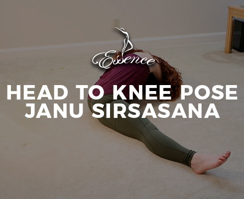 Head-to-Knee-Pose-Janu-Sirsasana