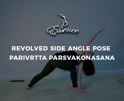 Revolved Side Angle Pose Parivrtta Parsvakonasana