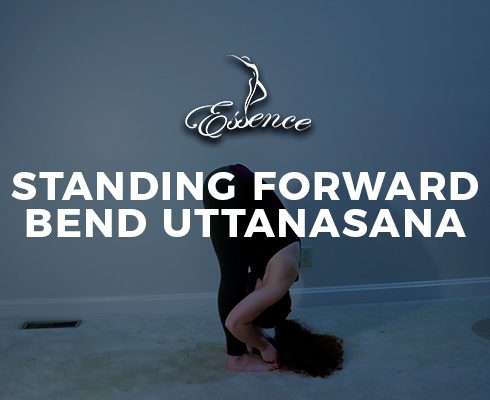 Standing Forward Bend Uttanasana