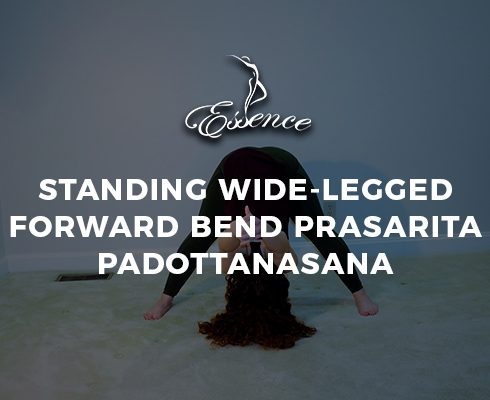 Standing Wide-Legged Forward Bend Prasarita Padottanasana